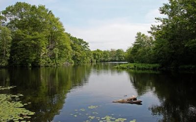 Jacob Pond, City of Norwell, Norwell, MA